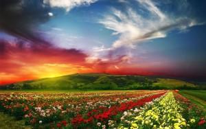 hemels landschap
