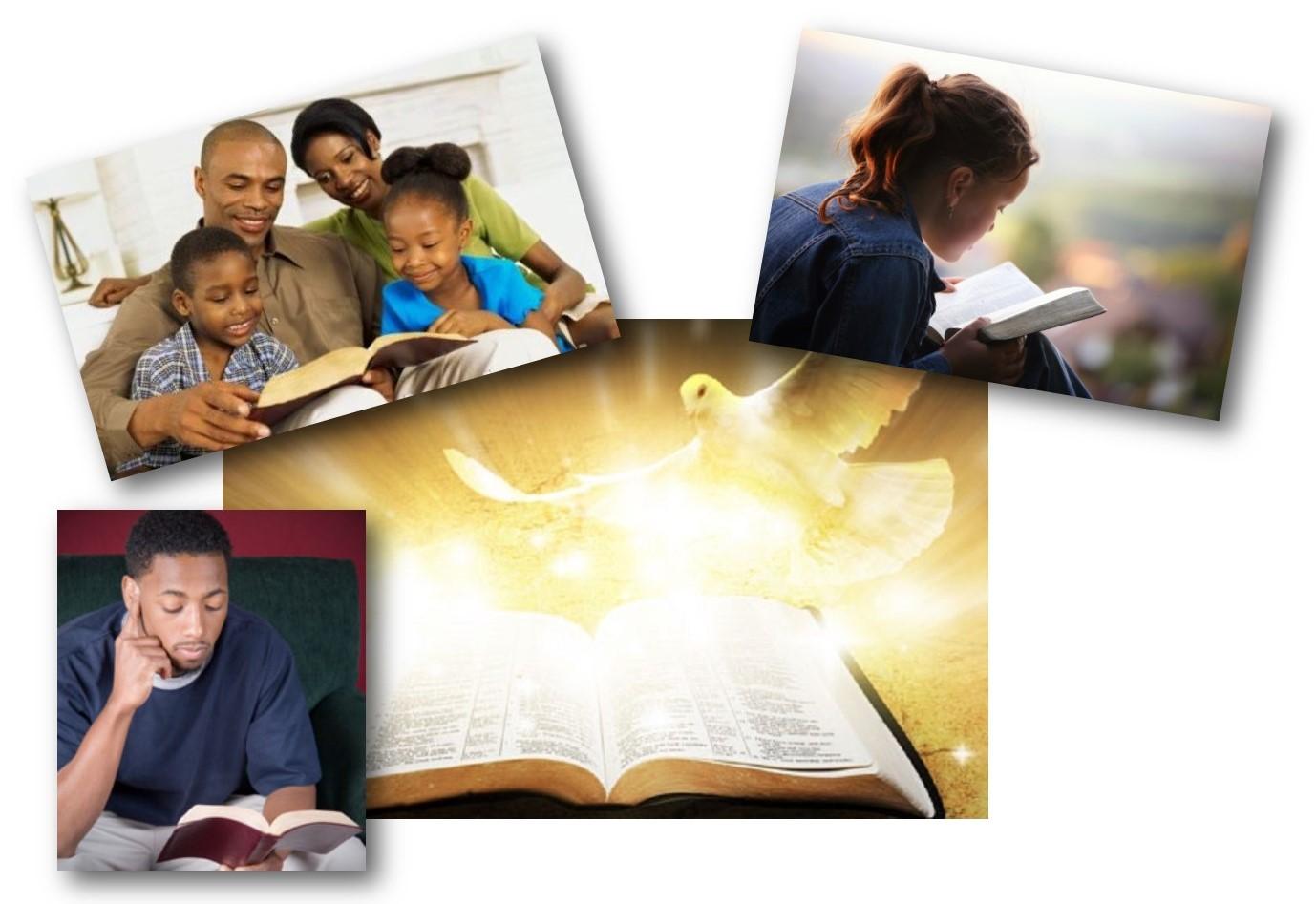 bijbel blijft boeien