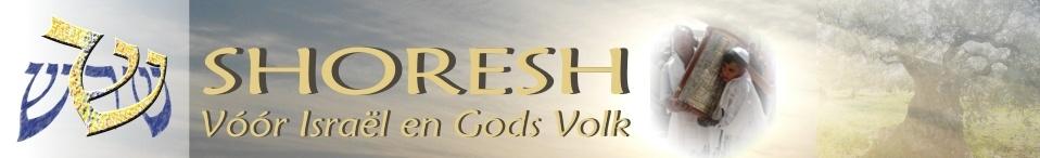 logo Shoresh
