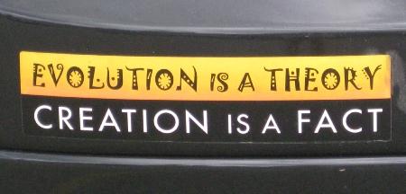 evolution_creation1