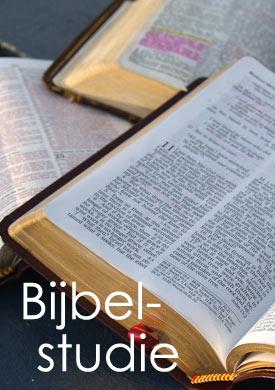 bijbelstudie4