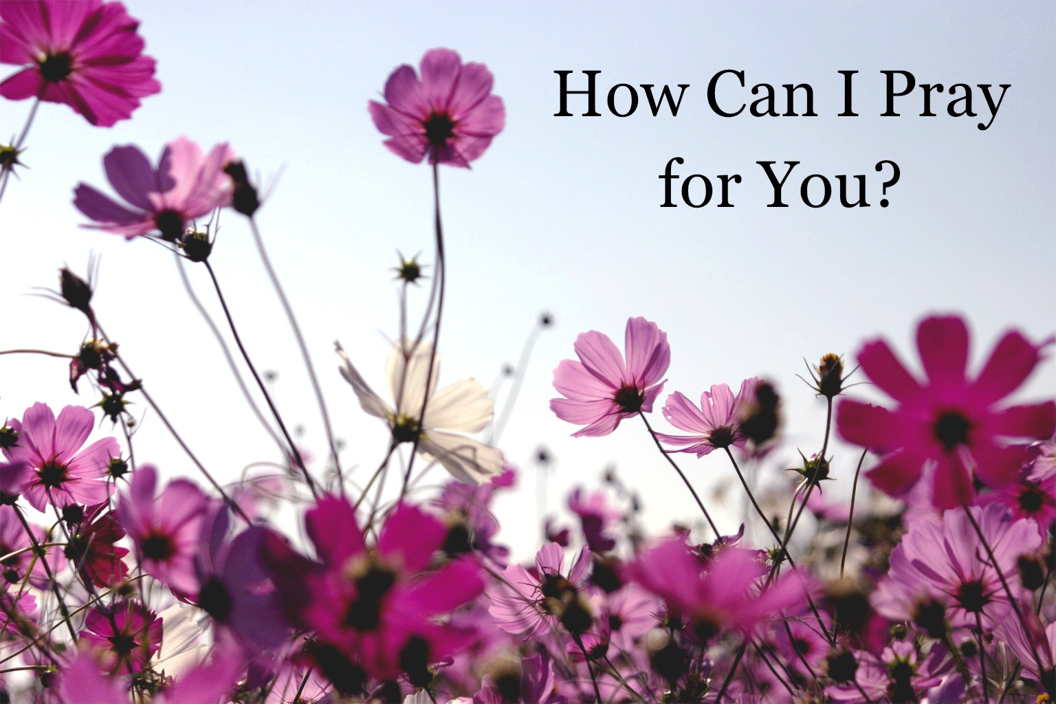How Can I Pray for You-
