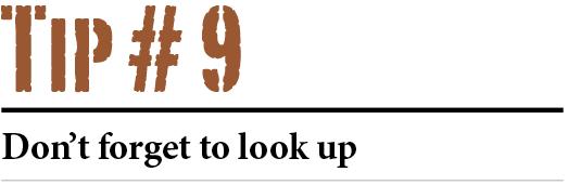 tip-9