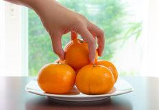 het-met-de-hand-plukken-van-sinaasappel-op-schotel-53199205